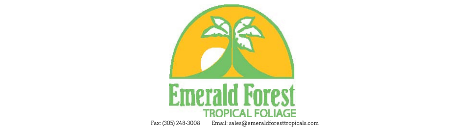 Emerald Forest Tropical's